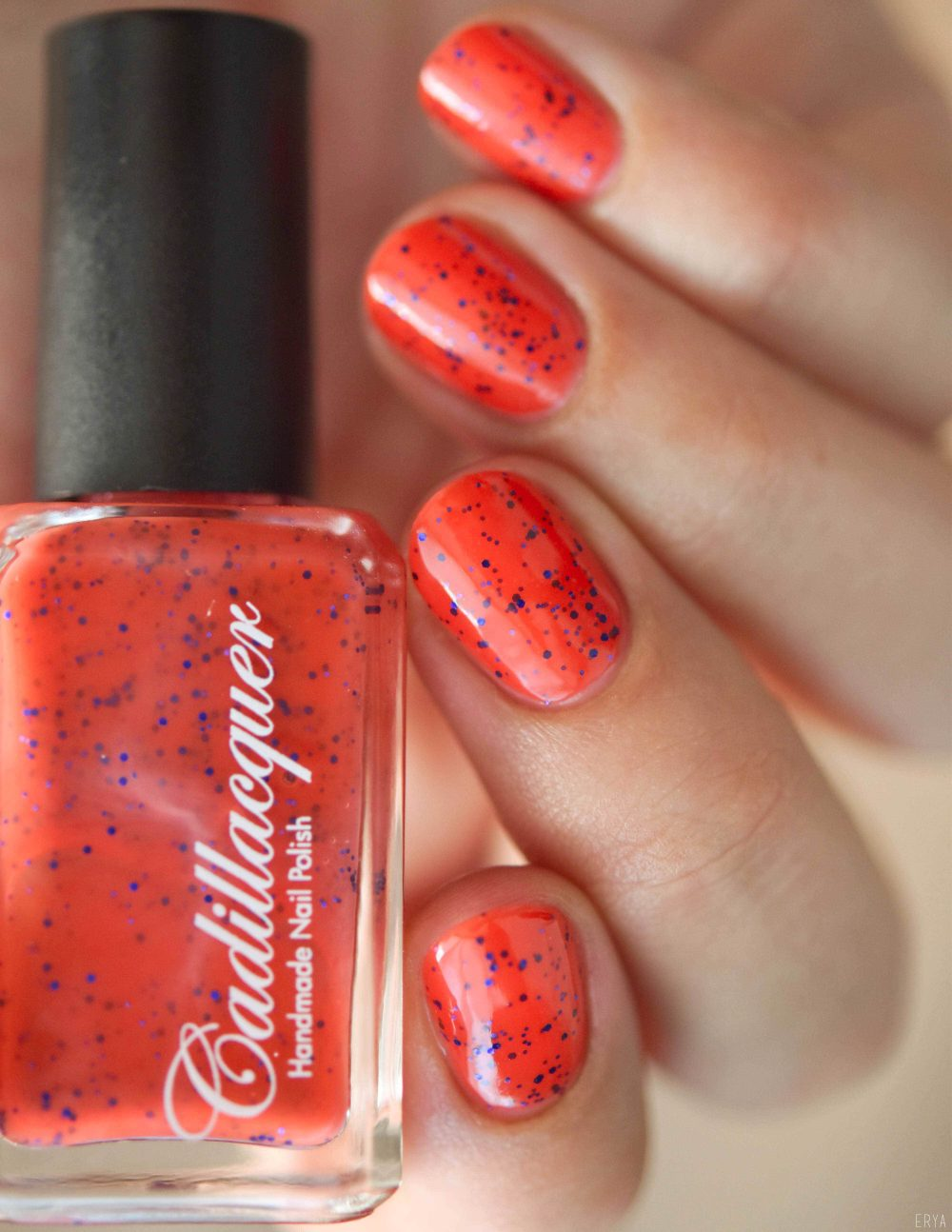 Cadillacquer-Embrace_The_Madness-7